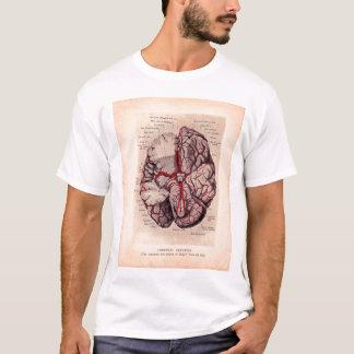 Ejemplo médico del cerebro del vintage camiseta