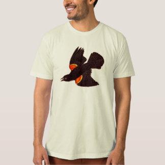 Ejemplo negro de alas rojas del pájaro de los camiseta