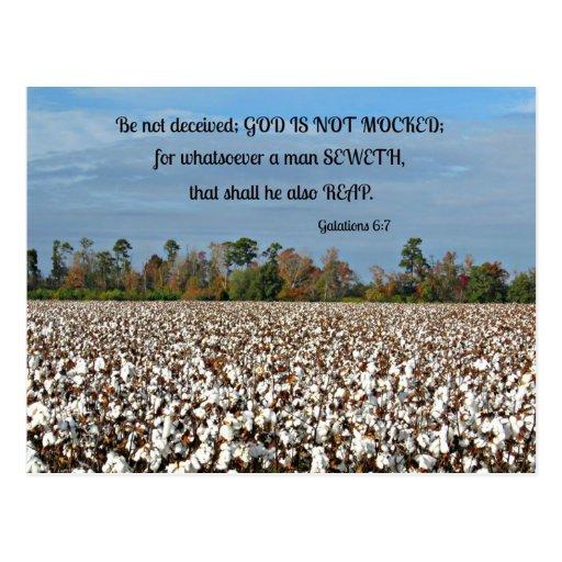 El 6:7 de Galatians no se engañe, dios no se imita Postales