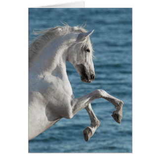 El alzarse del caballo de mar - tarjeta de