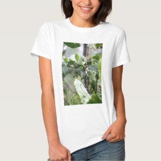 El amarillo dirigió los loros del Amazonas Camiseta