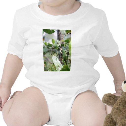El amarillo dirigió los loros del Amazonas Trajes De Bebé