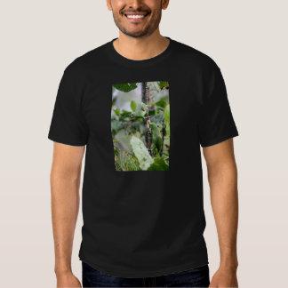 El amarillo dirigió los loros del Amazonas Camisetas