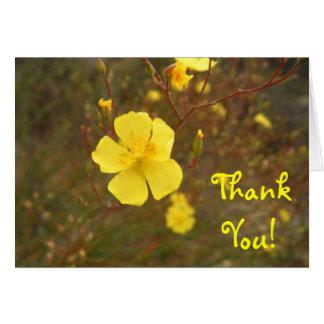El amarillo suave le agradece tarjeta pequeña
