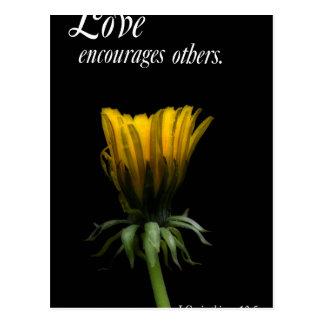 el amor anima otros postal