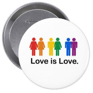 El amor es amor pins