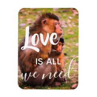 El amor es todo lo que necesitamos el imán lindo