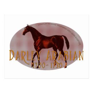 El árabe de Darley Postal