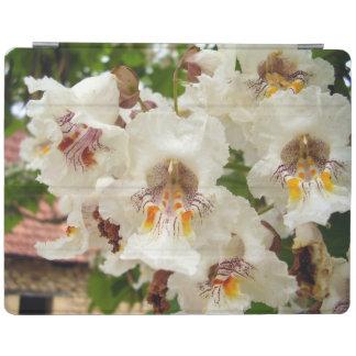 El árbol de haba indio florece la cubierta del cover de iPad