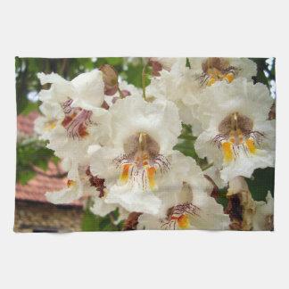 El árbol de haba indio florece la toalla de té
