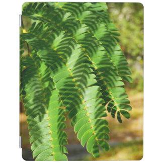 El árbol de seda persa sale de la cubierta del cubierta de iPad