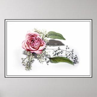 El arte de envejecer agraciado - un color de rosa  impresiones