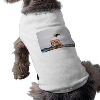 el aterrizaje del pelícano en el canal firma camiseta sin mangas para perro