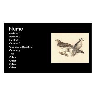 El azor americano(atricapillus de Astur) Tarjetas De Visita