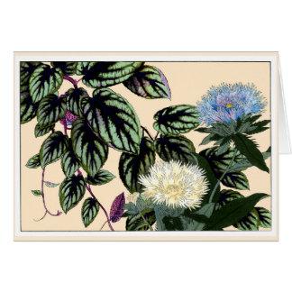 El azul y el blanco alimenta la tarjeta botánica