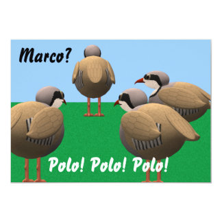 El B-día de Marco Polo invita Invitación 12,7 X 17,8 Cm