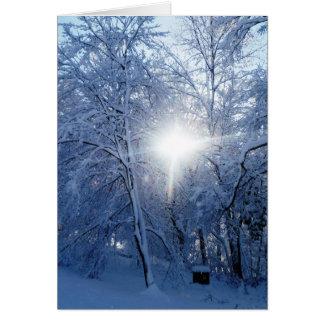 El beso del invierno tarjeta