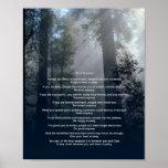 El bosque y Sun lo hacen de todos modos Poster