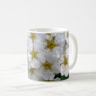 El brillar intensamente de las flores blancas taza de café