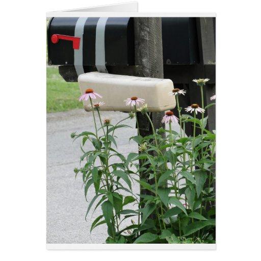 El buzón y las flores traen amor y rezos tarjeton