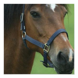 El caballo árabe representa Invitataion Invitación 13,3 Cm X 13,3cm