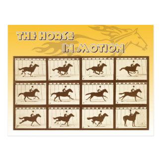 El caballo en el movimiento tarjeta postal