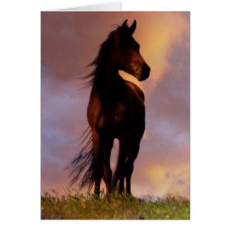 El caballo hermoso que piensa en usted carda tarjeta