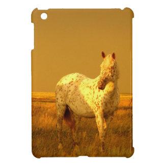 El caballo manchado en el resplandor de oro de una