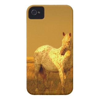 El caballo manchado en el resplandor de oro de una funda para iPhone 4