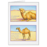 EL Camello, tarjeta