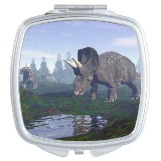 El caminar de dos dinosaurios de espejos de viaje