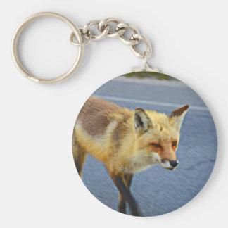 El caminar del Fox Llavero Redondo Tipo Chapa