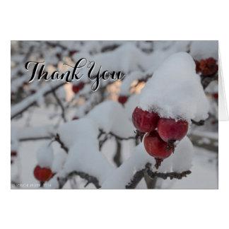 El cangrejo Apple Nevado le agradece Tarjeta De Felicitación
