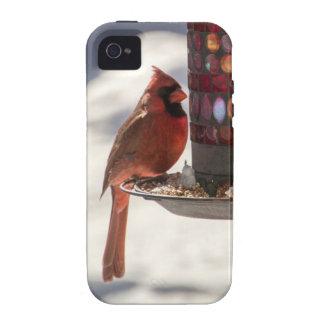 El cardenal iPhone 4/4S funda