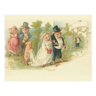 El casarse de los cerdos del vintage postal