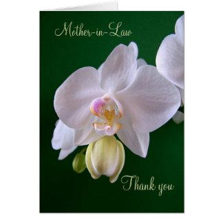 El casarse. Suegra. Gracias cardar con la orquídea Tarjeta De Felicitación