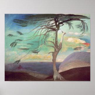 El Cedar solitario, 1907 Poster