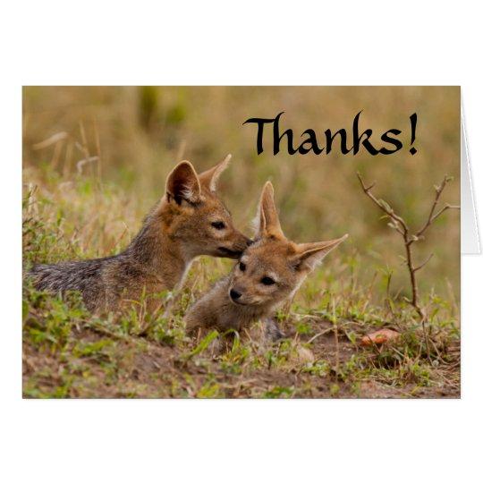 El chacal Cub le agradece Tarjeta De Felicitación