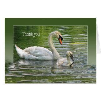 El cisne con el pollo del cisne en el agua para le tarjeta de felicitación