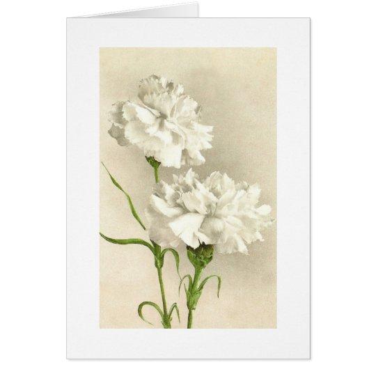 El clavel blanco que piensa en usted/le agradece tarjeta pequeña