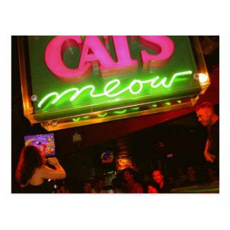 El club nocturno del maullido del gato en New Postal
