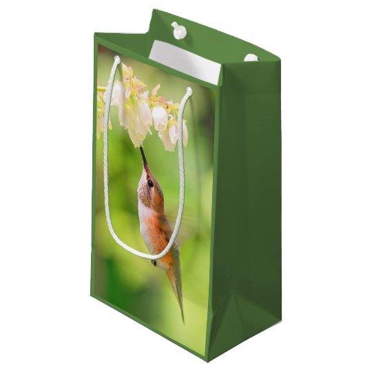 El colibrí rufo sorbe el néctar del flor del bolsa de regalo pequeña