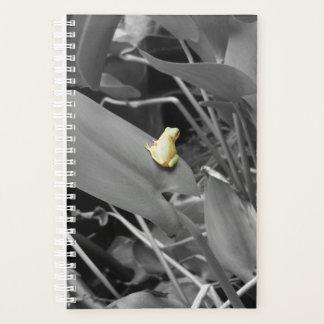 El color de la naturaleza: Planificador de la rana