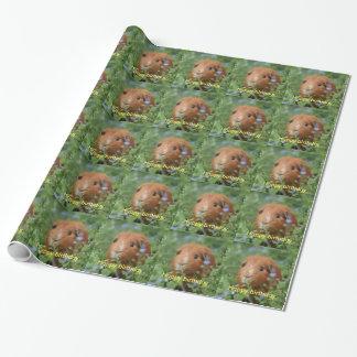 El conejillo de Indias del jengibre del papel de