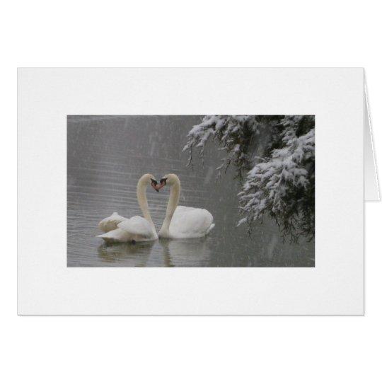 El cortejar de los cisnes mudos tarjeta de felicitación