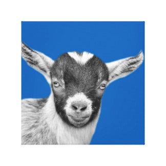 El cuarto de niños de la granja de la cabra impresión en lienzo