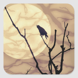 El cuervo, la luna, las sombras pegatina cuadrada