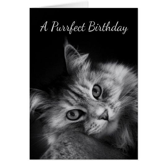 El cumpleaños de Purrfect desea la tarjeta