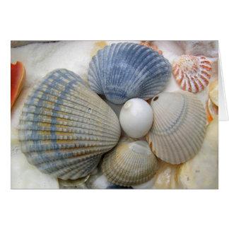 El cumpleaños del amigo cristiano de los Seashells Tarjeta De Felicitación