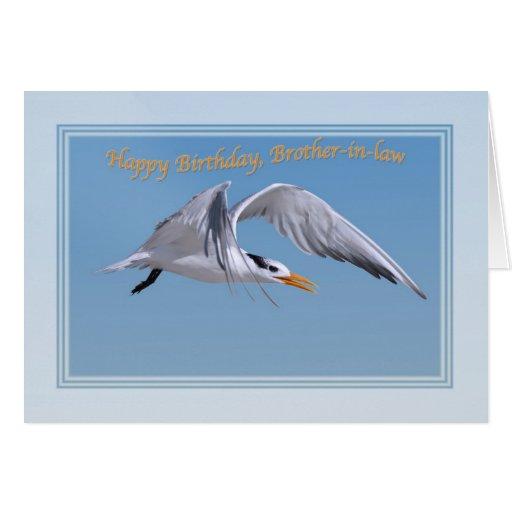 El cumpleaños del cuñado con el pájaro real de la  tarjeta
